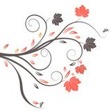 Fototapeta beautiful abstract vector floral design