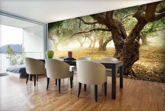 drzewa oliwne krajobrazy fototapety. Black Bedroom Furniture Sets. Home Design Ideas
